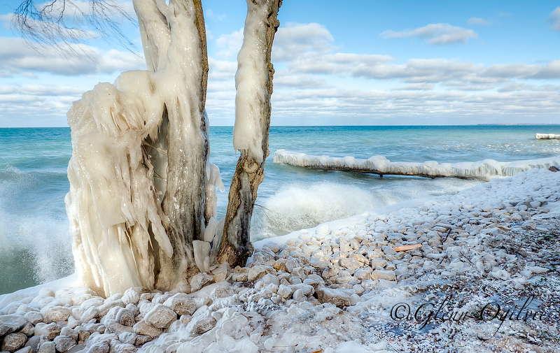 A still-open Lake Huron in late January wraps a stand of trees in an overcoat of ice on Sarnia's shoreline.